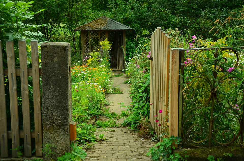 abri jardin